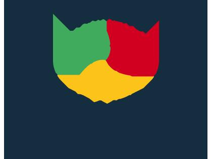 Wales Netball