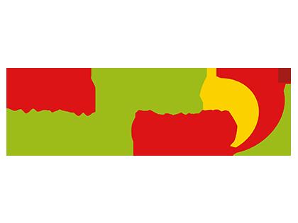 Welsh Netball