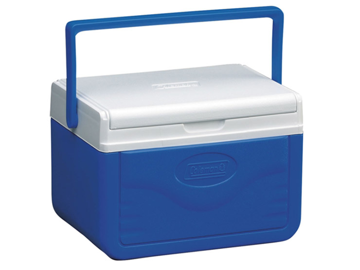 4.7 Litre Mini Ice Chest