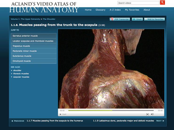 Atlas of Human Anatomy Downloads