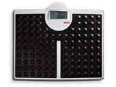 Seca Scales 813