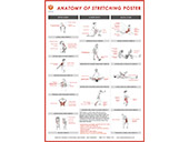 Stretching Wallchart