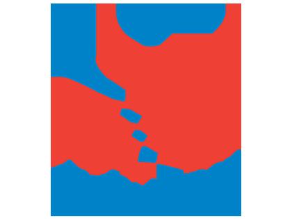 ACPSEM   Physios in Sport