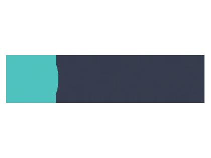 NLSSM
