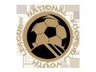 National Football Youth League